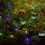 Smart Solar 20 LED Multi-coloured Butterfly Light String