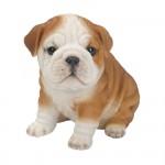 Vivid Arts Pet Pals Bulldog Puppy – Size F