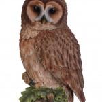 Vivid Arts Plaque Tawny Owl – Size D