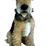 Vivid Arts Real Life Airedale – Size A