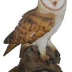 Vivid Arts Real Life Barn Owl – Size B