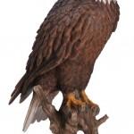 Vivid Arts Real Life American Bald Eagle – Size B