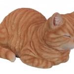 Vivid Arts Real Life Dreaming Cat Ginger – Size B