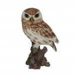 Vivid Arts Real Life Little Owl – Size D