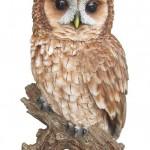 Vivid Arts Real Life Tawny Owl – Size B