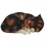 Vivid Arts Real Life Sleeping Cat Tortoiseshell – Size B