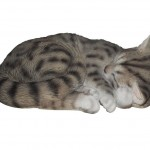 Vivid Arts Real Life Sleeping Cat Tabby – Size B
