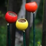 Flower Cup Feeder – 3 Pack