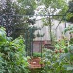 6′ Fruit Cage Door (deluxe)