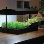 Garland Grow Light Garden