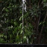 Sunjet 500 Water Solar Pump