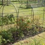 Haxnicks Steel Long Fruit Cage