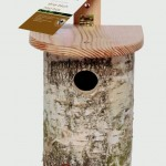 Chapelwood Nest Box – Silver Birch Log