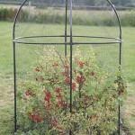 Haxnicks Steel Round Fruit Cage