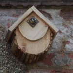 Forest Nestbox