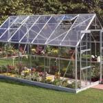Halls Magnum Greenhouse (8ft Wide)