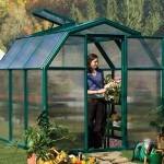 Rion Eco 6X10 Greenhouse with Base