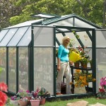 Rion Hobby 8X12 Greenhouse with Base