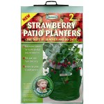 Strawberry Patio Planters (2 Pack)