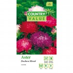 Country Value ASTER Duchess Mixed Seeds