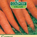 Country Value CARROT Autumn King 2 Seeds