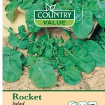 Country Value ROCKET Salad Leaves Seeds