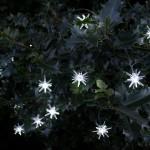 Solar Centre Starburst Solar String Lights White