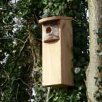 Wildlife World Woodpecker Nest Box